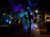 Margaret Craig - Luminaria 2016 - Carver Community Cultural Center - Performance blends with brightly lit trees