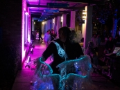Margaret Craig - Luminaria 2016 - Carver Community Cultural Center - Through a colorfully lit walkway